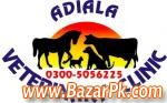 Adiala Veterinary Clinic And Animals Care Center